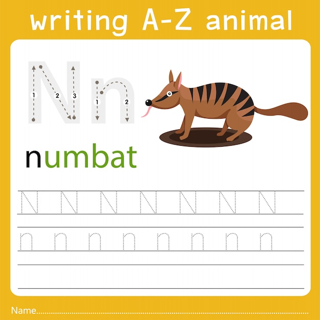 Writing a-z animal n Premium Vector