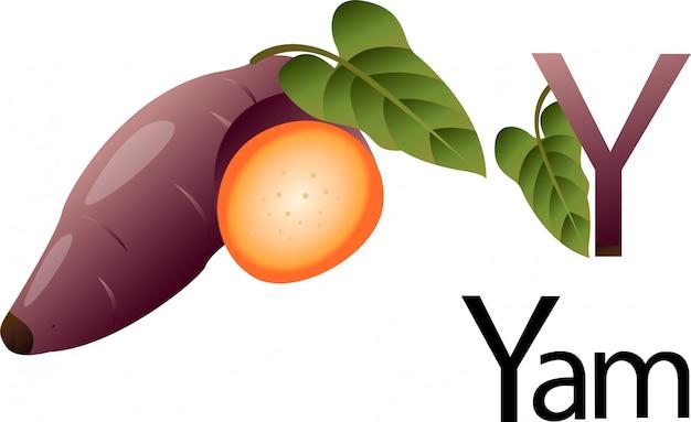 Yamのイラストレーターyフォント Premiumベクター