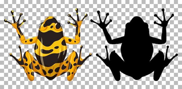 Rana bandita gialla con la sua silhouette isolata su bianco Vettore gratuito