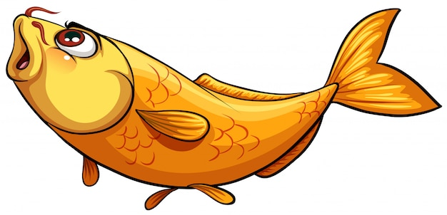 Yellow big fish Premium Vector