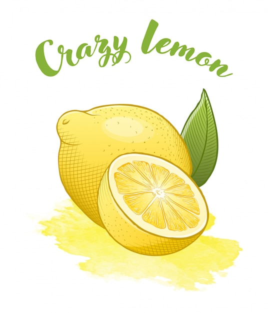 Yellow bright lemon isoalted Premium Vector