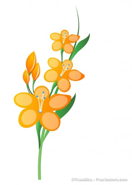 Yellow flower branch illustration