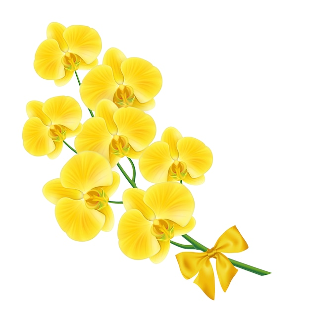 Yellow flower design