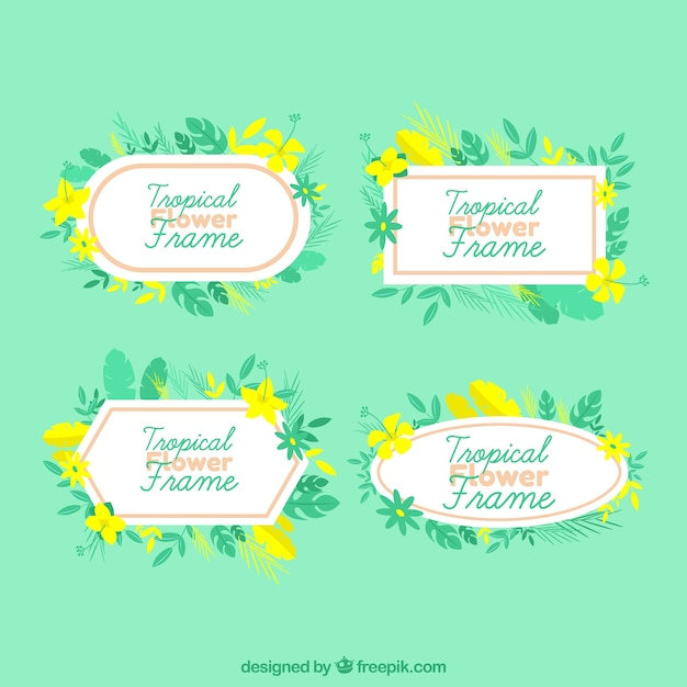 Yellow flower frame collecti