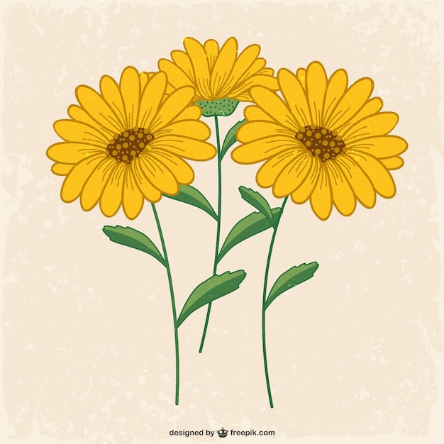 Yellow Flowers Vector Free Download