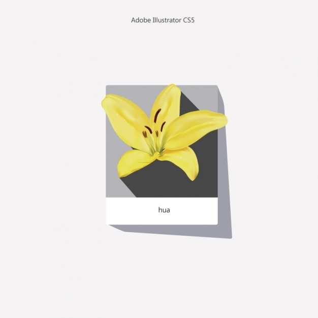 Yellow lily realistic flower background