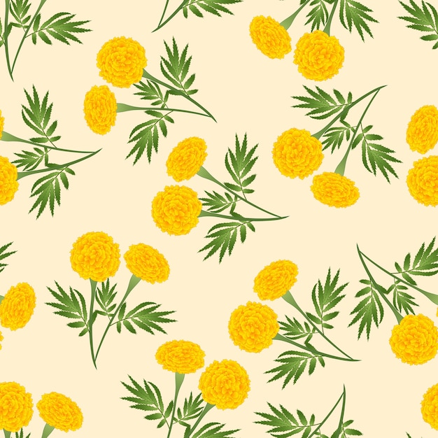Yellow marigold seamless on beige ivory background Premium Vector