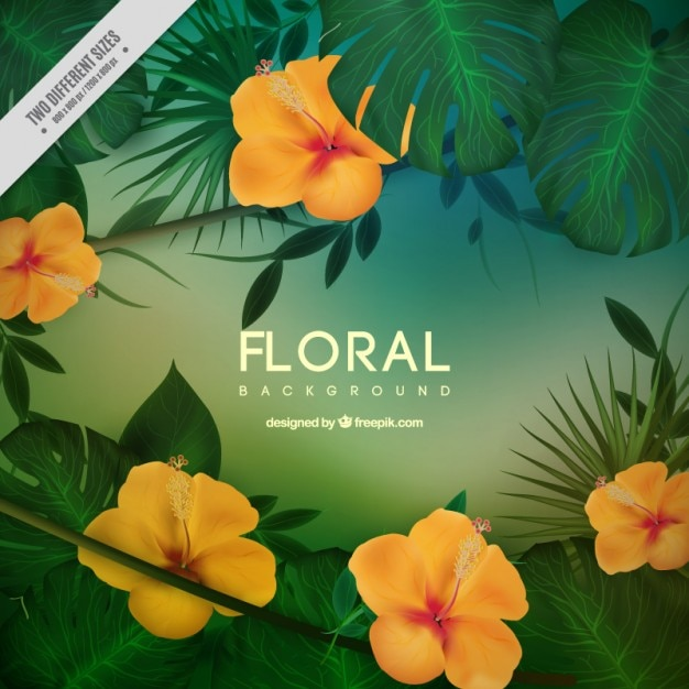 yellow tropical flowers with leaves background vector  free download, Natural flower