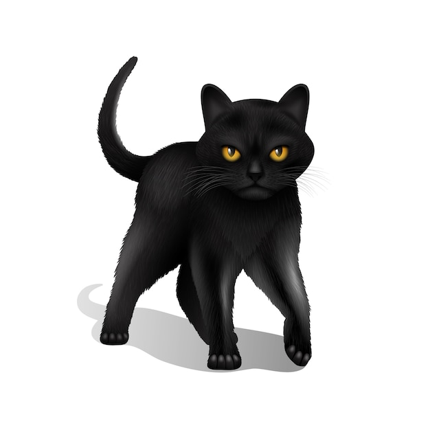 Young black realistic domestic cat isolated on white background Free Vector