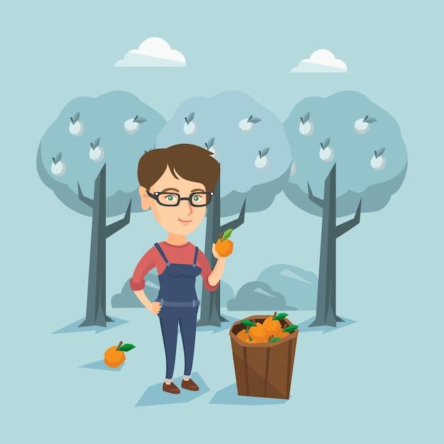Young caucasian farmer collecting oranges. Premium Vector