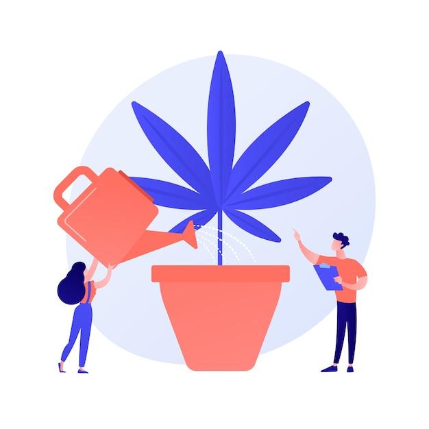 麻の植物、禁じられた観葉植物に水をまく若い女性。マリファナ栽培、医療大麻、違法園芸。雑草を育てる少女。ベクトル分離概念比喩イラスト 無料ベクター