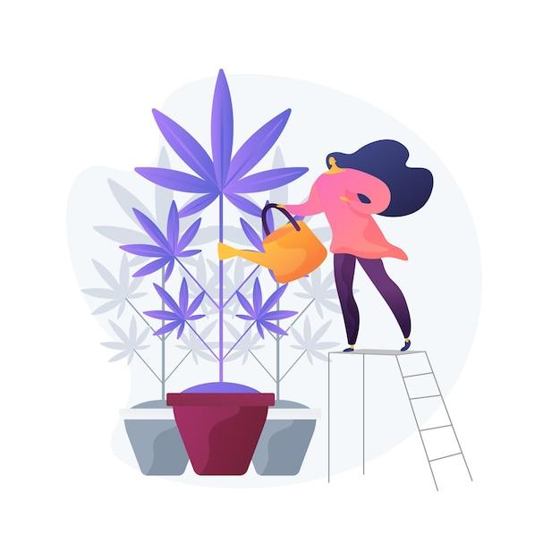 麻の植物、禁じられた観葉植物に水をまく若い女性。マリファナ栽培、医療大麻、違法園芸。雑草を育てる少女。 無料ベクター