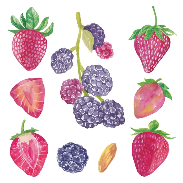 Yummy cute watercolor blueberry and strawberry fruits collection Premium Vector