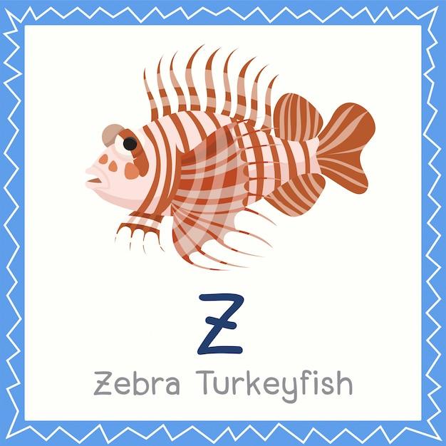 Иллюстратор z для зебры Premium векторы