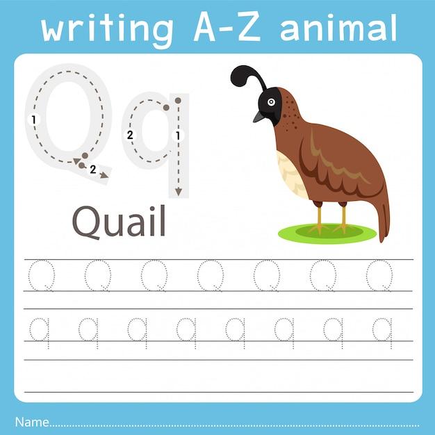 ウズラのz動物を書くイラストレーター Premiumベクター