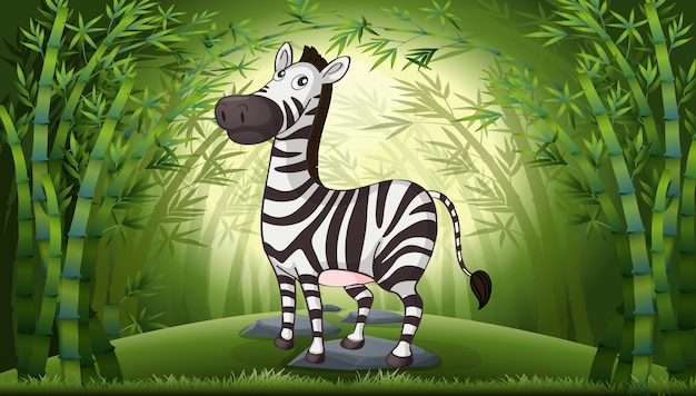 A zebra in bamboo forest Free Vector