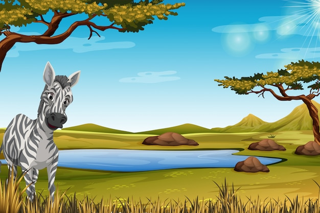 Zebra in the forest Free Vector