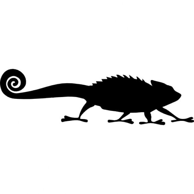 Chamäleon Reptil Form Download Der Kostenlosen Icons