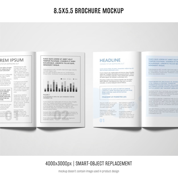 Porträtbroschüre-modell Kostenlosen PSD