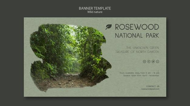 Rosenholz nationalpark banner vorlage mit bäumen Kostenlosen PSD
