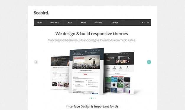 Seevogel - homepage html5 vorlage psd Kostenlosen PSD