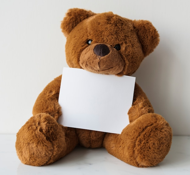 Teddy, der papier hält Kostenlosen PSD