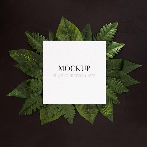 Tropische pflanzen mit frame-modell auf schwarzem hintergrund Kostenlosen PSD