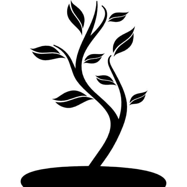 petit arbre sur un terrain t l charger icons gratuitement. Black Bedroom Furniture Sets. Home Design Ideas