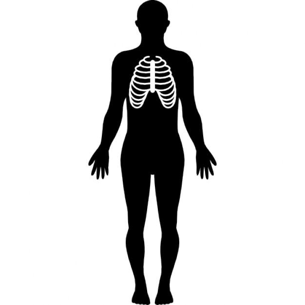 silhouette du corps humain en mettant l 39 accent sur le syst me respiratoire t l charger icons. Black Bedroom Furniture Sets. Home Design Ideas
