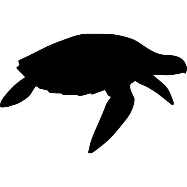 Siluetas De Tortugas Related Keywords Suggestions Siluetas De