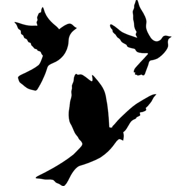 Palomas Volando | Fotos y Vectores gratis