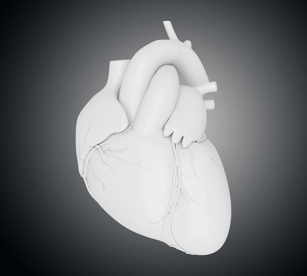 3d coeur humain Photo Premium