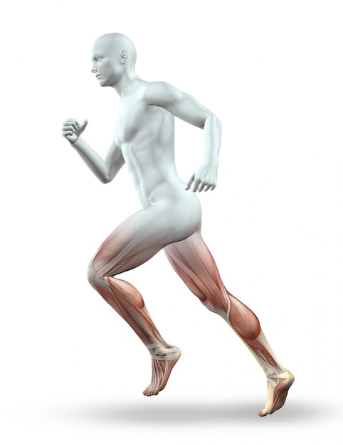 3d rendent d'un personnage masculin avec squelette en cours d'exécution Photo gratuit