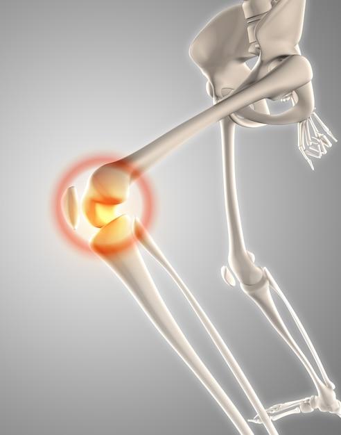 3d rendent d'un squelette avec le genou a mis en évidence montrant la douleur Photo gratuit