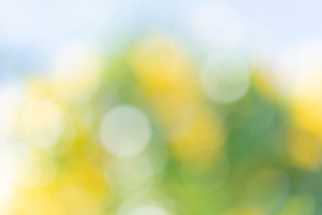 Abstrait défocalisé bokeh coloré vert jaune floue fond Photo Premium