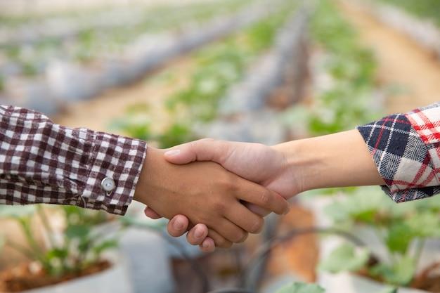 Accord Commercial Serrant La Main Dans Une Plantation De Melon Photo gratuit