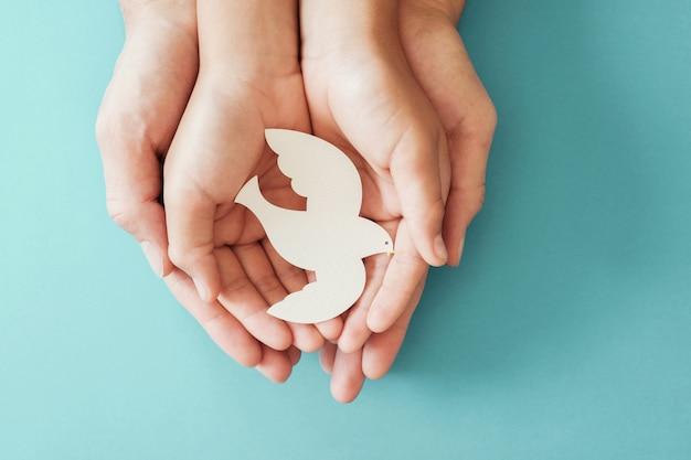 Adulte Et Enfant Mains Tenant Une Colombe Blanche Oiseau Sur Fond Bleu Photo Premium