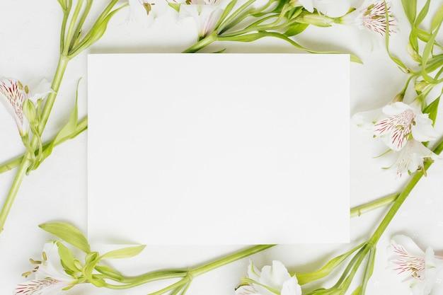 Affichette blanche blanche entourée de fleurs d'alstroemeria Photo gratuit