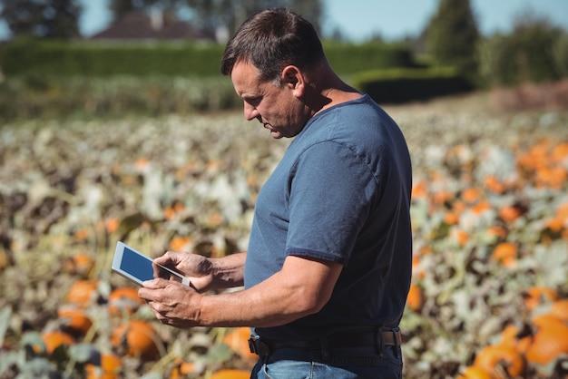 Agriculteur à l'aide de tablette numérique dans le champ de citrouille Photo gratuit