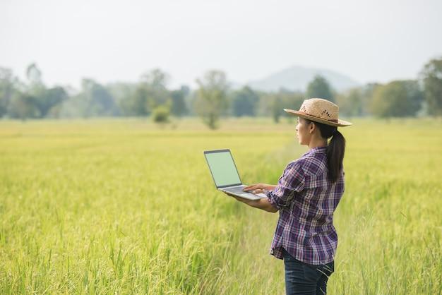 Agriculteur dans un champ de riz avec un ordinateur portable Photo gratuit