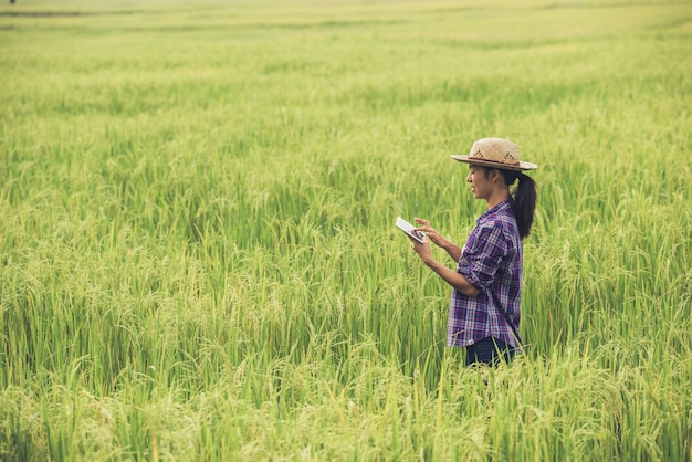 Agriculteur debout dans une rizière avec une tablette. Photo gratuit