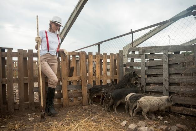 Agriculteur prenant soin de cochons dans une étable Photo gratuit