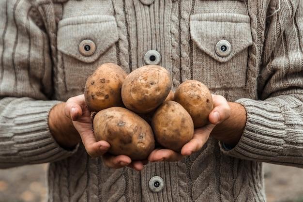 Agriculteur tenant dans les mains la récolte de pommes de terre dans le jardin. Photo Premium