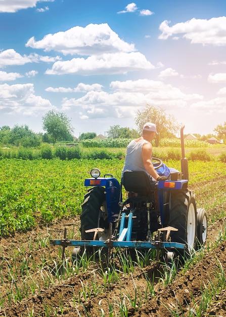 Un agriculteur sur un tracteur laboure un champ. Photo Premium