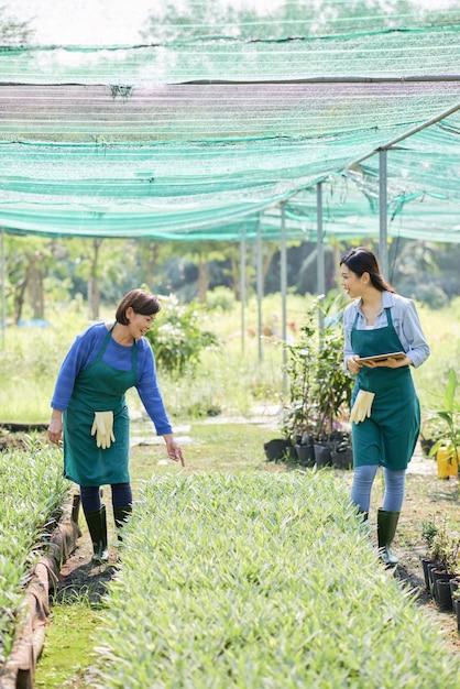 Agriculteurs Travaillant En Serre Photo gratuit