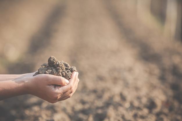 Les agricultrices étudient le sol. Photo gratuit