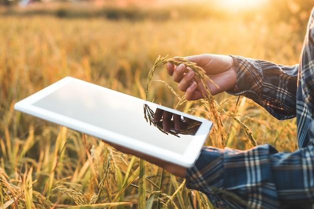 femme agricole recherche)