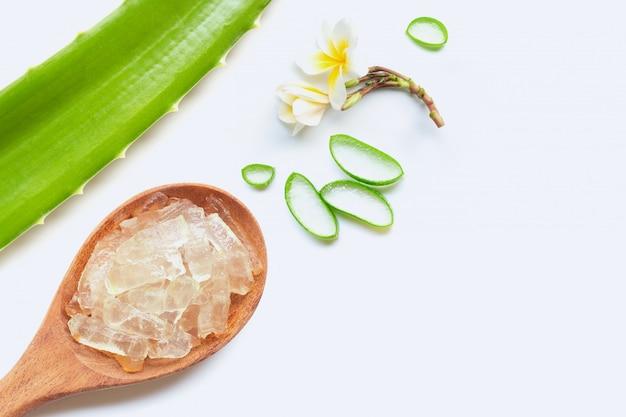 L'aloe vera est une plante médicinale populaire pour la santé et la beauté, fond blanc. Photo Premium
