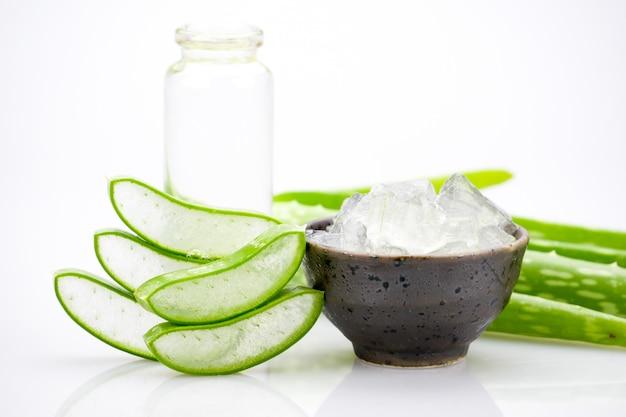 Aloe vera tranche sur fond blanc Photo Premium