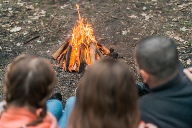 Amis Camping Avec Feu De Joie Photo gratuit